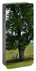A One Horse Tree And Its Horse					 Portable Battery Charger