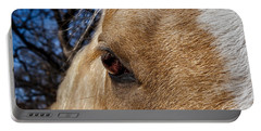 A Palomino's Eye. Portable Battery Charger