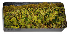 Portable Battery Charger featuring the photograph A Prickly Pear View by Mark Myhaver