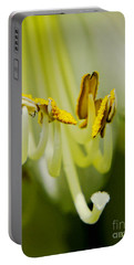 A Single Flower In Full Bloom Portable Battery Charger