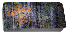 A Splash Of Fall Color Portable Battery Charger