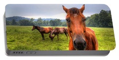 A Starring Horse 2 Portable Battery Charger