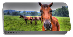 A Starring Horse Portable Battery Charger