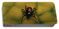 A Tick Found In The Southern Siberian Portable Battery Charger