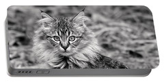 A Young Maine Coon Portable Battery Charger by Rona Black