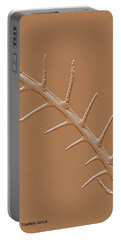 Abstract Branch Winter Net Leaf Hackberry Tree Portable Battery Charger by Tom Janca