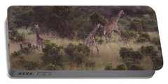 Africa Dream Portable Battery Charger