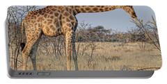 Africa, Namibia, Kaokoland, Namib Portable Battery Charger