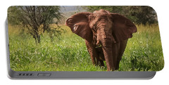 African Desert Elephant Portable Battery Charger
