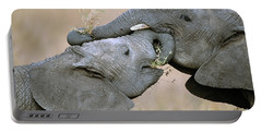 African Elephant Calves Playing  Portable Battery Charger