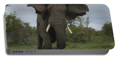 African Elephant Charging Sabi-sands Portable Battery Charger