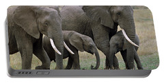 African Elephant Females And Calves Portable Battery Charger