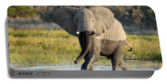 Portable Battery Charger featuring the photograph African Elephant Mock-charging by Liz Leyden