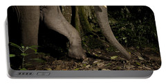 African Elephant Night Walk Kibale Np Portable Battery Charger