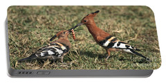 Portable Battery Charger featuring the photograph African Hoopoe Feeding Young by Liz Leyden