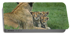 Portable Battery Charger featuring the photograph African Lion Cubs Study The Photographer Tanzania by Dave Welling