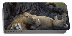 African Lion Panthera Leo Wild Kenya Portable Battery Charger