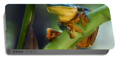 Agalychnis Calcarifer 4 Portable Battery Charger by Arterra Picture Library