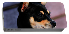 Agie - Chihuahua Pitbull Portable Battery Charger