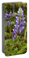 Alaskan Lupine In Denali Park Portable Battery Charger