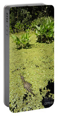 Alligator In Corkscrew Swamp, Florida Portable Battery Charger by Gregory G. Dimijian