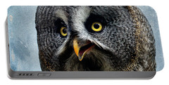 Allocco Della Lapponia - Tawny Owl Of Lapland Portable Battery Charger