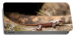 Aloha Anole   Portable Battery Charger