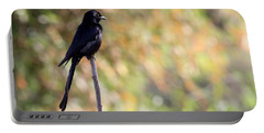 Alone - Black Drongo  Portable Battery Charger by Ramabhadran Thirupattur