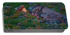 Portable Battery Charger featuring the photograph Alpine Blush by Jim Garrison