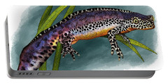 Alpine Newt Portable Battery Charger