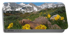 Portable Battery Charger featuring the photograph Alpine Sunflower Mountain Landscape by Cascade Colors