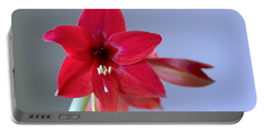 Amaryllis 2 Portable Battery Charger