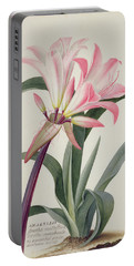 Amaryllis Belladonna, 1761 Portable Battery Charger
