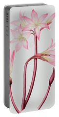 Amaryllis Belladonna Portable Battery Charger