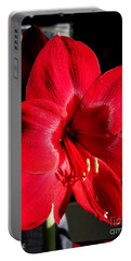 Portable Battery Charger featuring the photograph Amaryllis Named Black Pearl by J McCombie