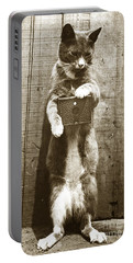 Portable Battery Charger featuring the photograph Amateur Feline Fotografer Cat With A Box Camera  Historical Photo 1900 by California Views Mr Pat Hathaway Archives