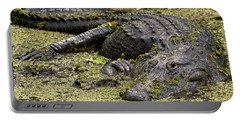 American Alligator Smile Portable Battery Charger