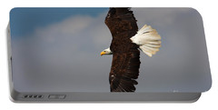 American Bald Eagle In Flight Portable Battery Charger
