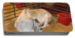 Portable Battery Charger featuring the photograph American Brahman Heifer by Connie Fox