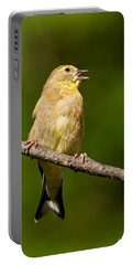 American Goldfinch Singing Portable Battery Charger