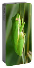 American Green Tree Frog Portable Battery Charger