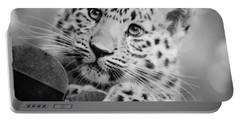Amur Leopard Cub Portrait Portable Battery Charger