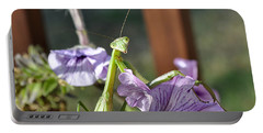 Portable Battery Charger featuring the photograph An Autumn Surprise by Verana Stark