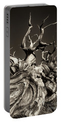 Ancient Bristlecone Pine In Black And White Portable Battery Charger