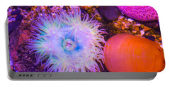 Anemone And Friends Portable Battery Charger