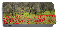 At Ruchama Forest Israel Portable Battery Charger
