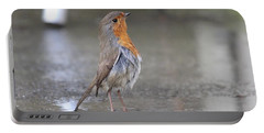 Angry Bird  Portable Battery Charger