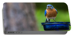 Angry Bluebird Portable Battery Charger