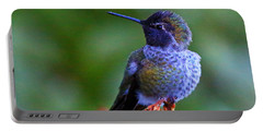 Annas Hummingbird Portable Battery Charger
