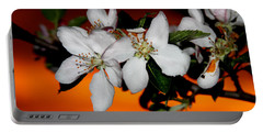 Apple Blossom Sunrise I Portable Battery Charger